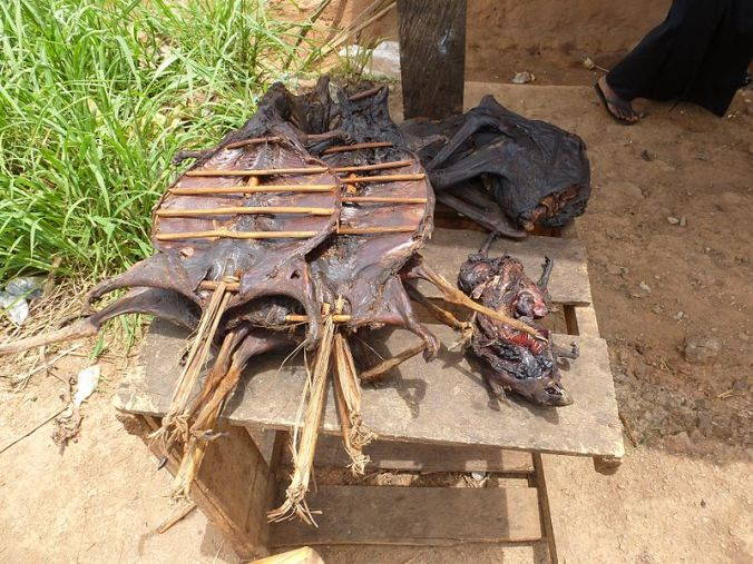 Assorted bushmeat on the side of the road in Ghana